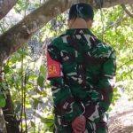 Anggota TNI Ditemukan Meninggal Tergantung di Pohon Jamb