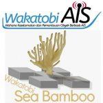 LPTK Wakatobi Daftarkan WakatobiAIS dan Wakatobi Sea Bamboo