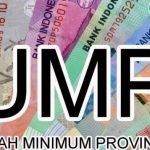 Sultra Tunggu Keputusan Dewan Pengupahan Untuk Terapkan UMS