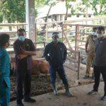 DPRD Jamin Stok Daging di Kendari Aman
