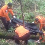 Wanita Paruh Baya yang Hilang di Hutan Paku Jaya Ditemukan Meninggal