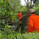 Warga Mawasangka Dilaporkan Hilang di Hutan Kumalano